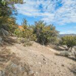 29062 Rocky Pass Pine Valley Ca
