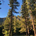 Town Of Pine Valley Utah