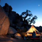 Pine Valley Camping Ground