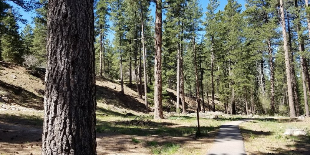 Pine Valley Recreation Area | Utah Travel Guide