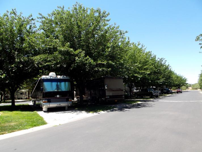 Camping, RV Parks, Campgrounds - Pine Valley Mtns, Utah