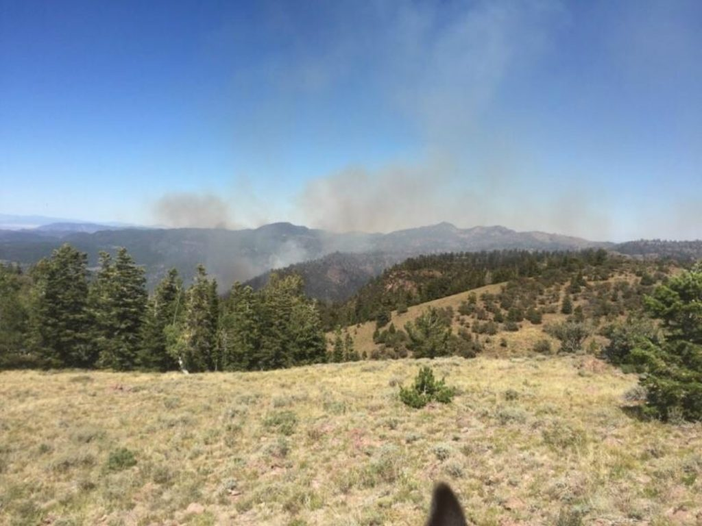 Fire sprouts on north side of Pine Valley Mountain ...