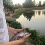 Fly Fishing Pine Valley Reservoir Utah