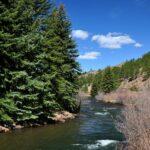 Pine Valley Cemetery Trail