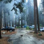 Lower Pines Campground Yosemite Valley Ca