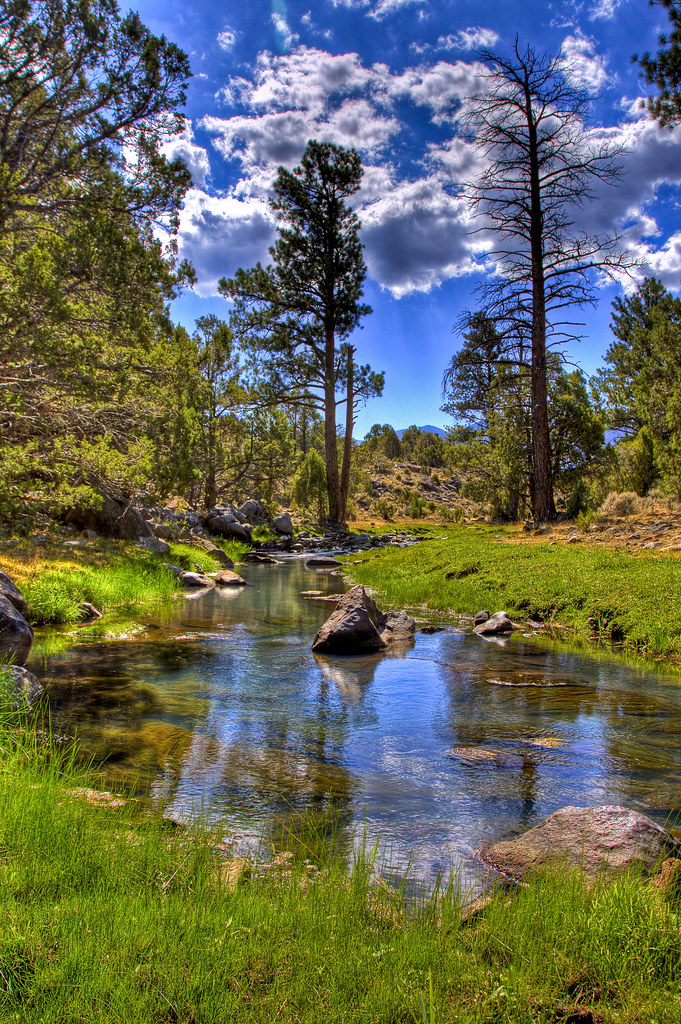 Pine Valley creek | Starting on Pine Valley mountain, this ...