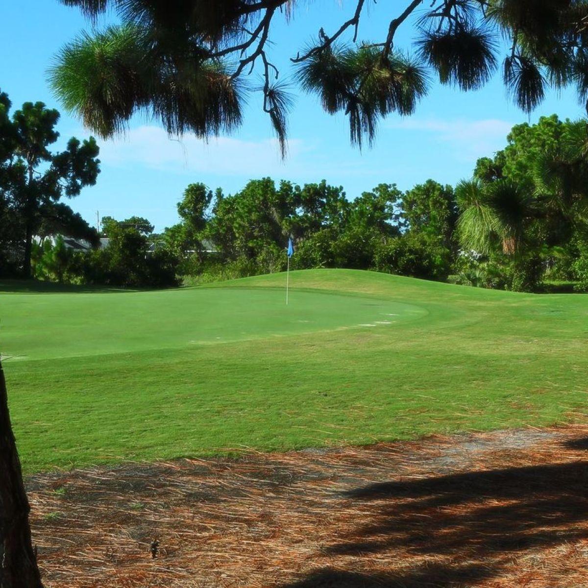 Rotonda Golf & Country Club Long Marsh - The Pine Valley ...