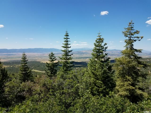 Your Dream Utah Property   $14,500   53 Acres Pine Creek ...