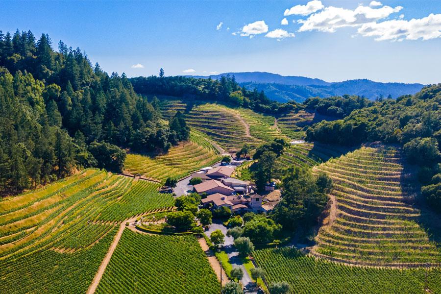 Napa Valley Wine Tasting at Pine Ridge Vineyards - Napa's ...
