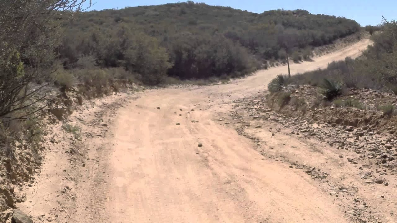 Rhino trail riding at Pine Valley - YouTube