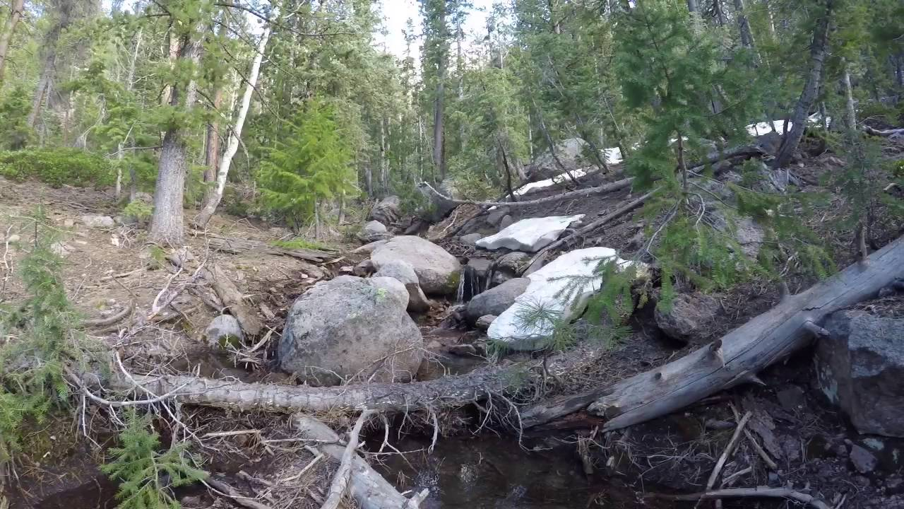 4 Miles of Whipple Trail - Pine Valley Mountain Wilderness ...